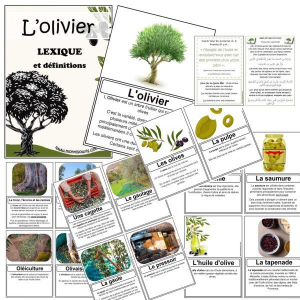 PACK découverte olivier